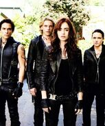 The Shadowhunters