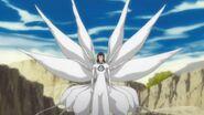 Aizen 3rd form