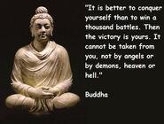 Buddha Quote 3