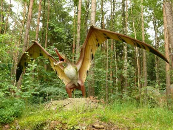 File:Pterosaur-580x435.jpg