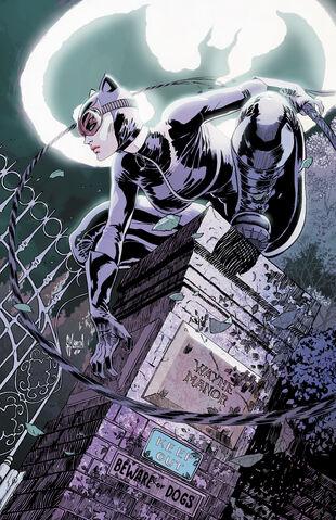File:Catwoman Vol 4-4 Cover-1 Teaser.jpg