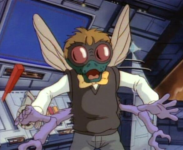 File:Baxter the Fly.jpg