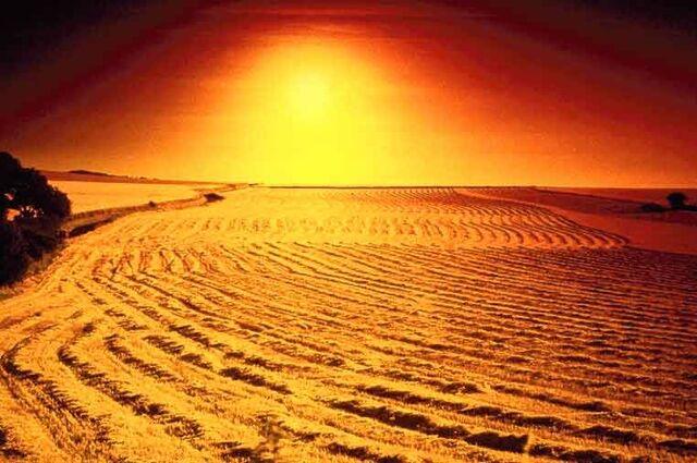 File:Desert1 OPT.jpg