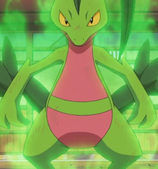 File:Grovyle Overgrow.png