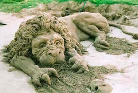 File:Sand lion.jpg