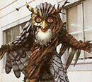 Owl Nezire