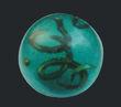 Gosei-vi-seaickorb