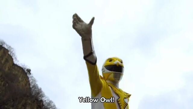 File:Yellow Owl (Delusional War).jpg
