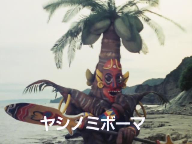 File:ヤシノミボーマ.jpg