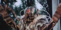 Striped Mosquito Evo