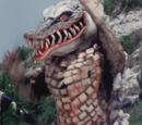 Crocodile Evo