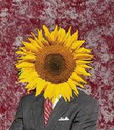 SunflowerOfficial
