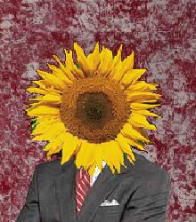 File:SunflowerOfficial.jpg