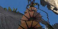 Corkscrew Cattail