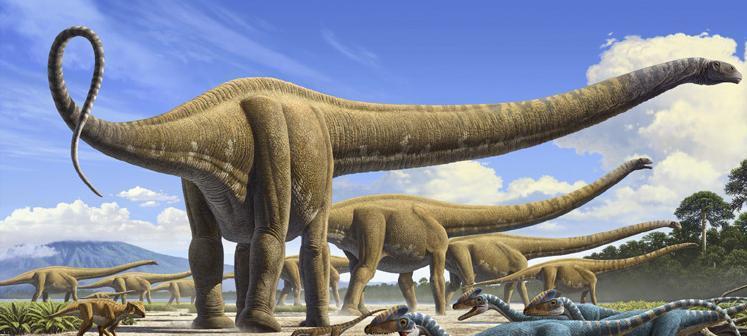 Картинки по запросу Маменчизавр