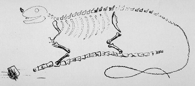 File:Mantell's Iguanodon restoration.jpg