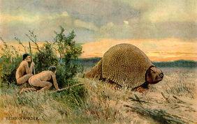 Glyptodon Heinrich Harder