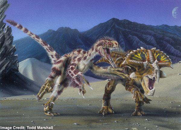 File:Velociraptor vs Protoceratops.jpg