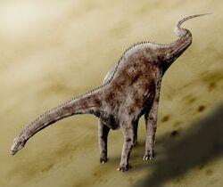 Diplodocus1