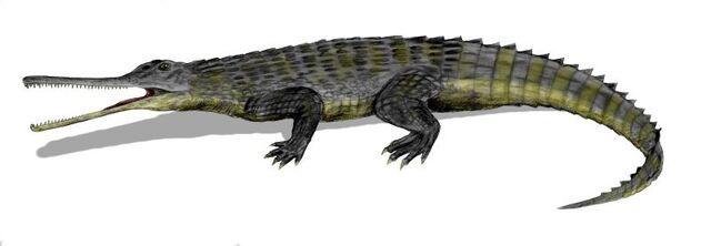 File:Rutiodon.jpg