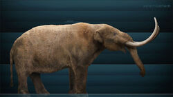 Life restoration of a Mastodon