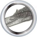 File:Badge-3733-3.png
