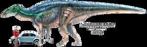 Zhuchengosaurus maximus-1-