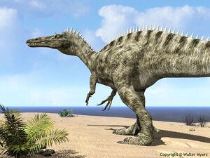 Suchomimus web-1-