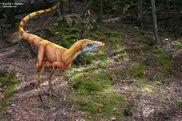 Sinosauropteryx 04