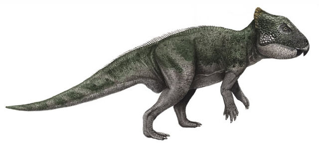 File:Archaeoceratops-1-.jpg