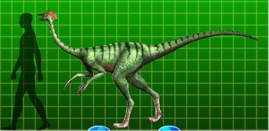 File:Dromiceiomimus-1-.jpg