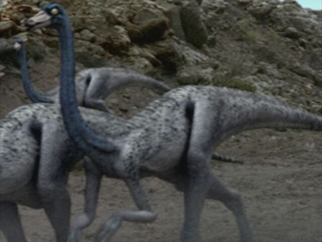File:1x1 Ornithomimus.jpg