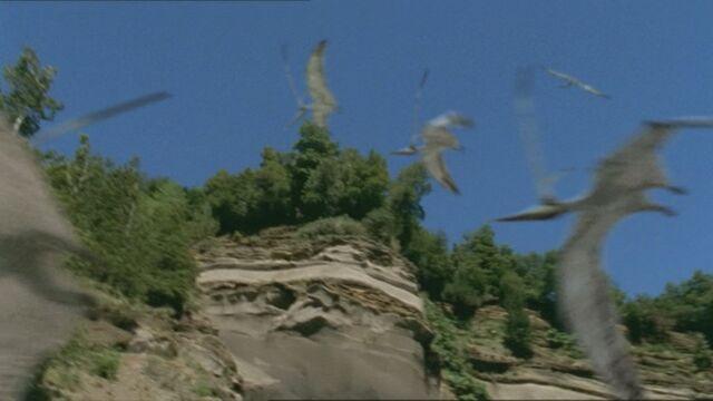 File:1x1 NyctosaurusFlock.jpg