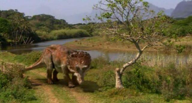 File:Triceratops Creek.jpg