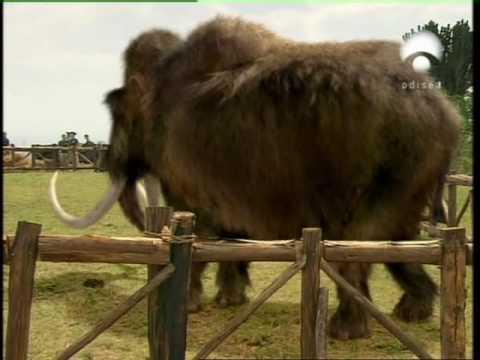File:Mammoth home.jpg