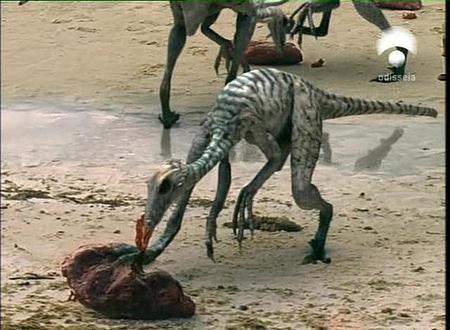 File:Troodon 6.jpg