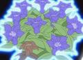HPC35.Flower