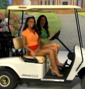 TPIR Models on Golf Cart-2