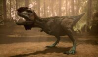 Cerabelisaurus