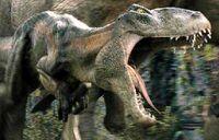 Corcoraptor