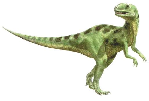 File:Yangchuanosaurus4.jpg