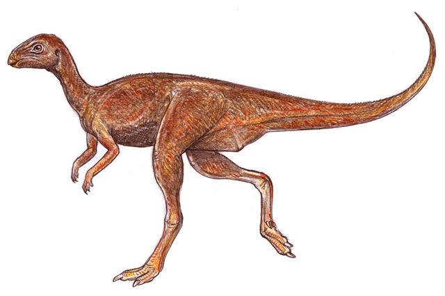 File:Gasparinisaura.jpg