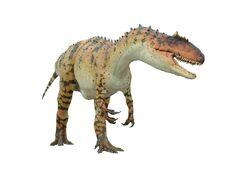 Allosaurus0003