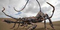 Silurian Scorpion (TSOT)
