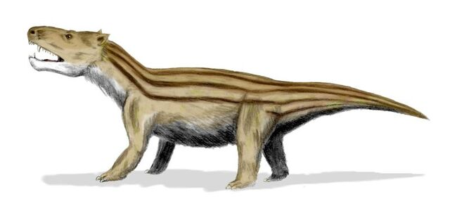 File:Cynognathus BW-1-.jpg