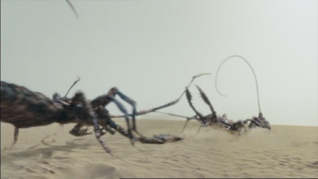 File:2x5scorpionsAboutToFight.png
