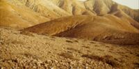 Cretaceous desert
