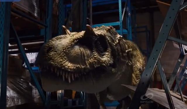 File:Albertosaurus head.png