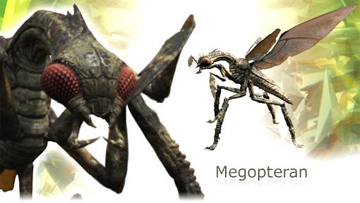 File:Primeval megopteran.jpg