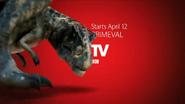 T.Rex 1